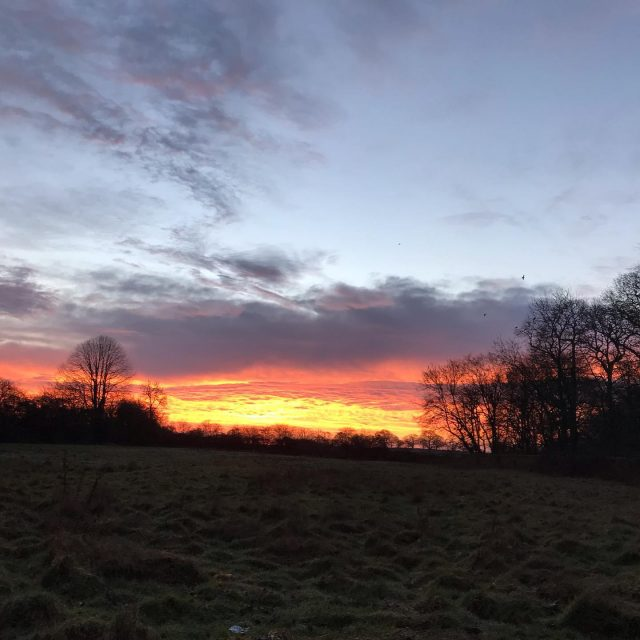 Yesterday's sunrise was a beaut.   #SwiftMortgages #Sunrise #morning  #Early #sun #Dawn #Redsky #Morning #Redskyinthemorning #Countrylife #Countryliving #firesky #Goodmorning